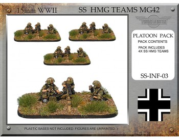 SS-INF-03 SS HMG Teams