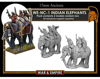 WE-NC01 Indian Elephants