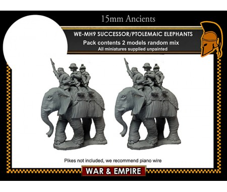 WE-MH09 Successor/Ptolemaic Elephants