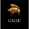Celtic Armies Gallic, Galatian, British