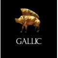 Celtic Armies Gallic, Galatian, British